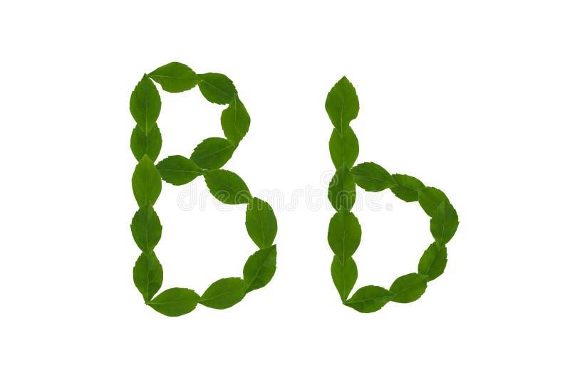 Letra B, Alfabeto Hecho De Las Hojas Verdes Imagen de archivo ...