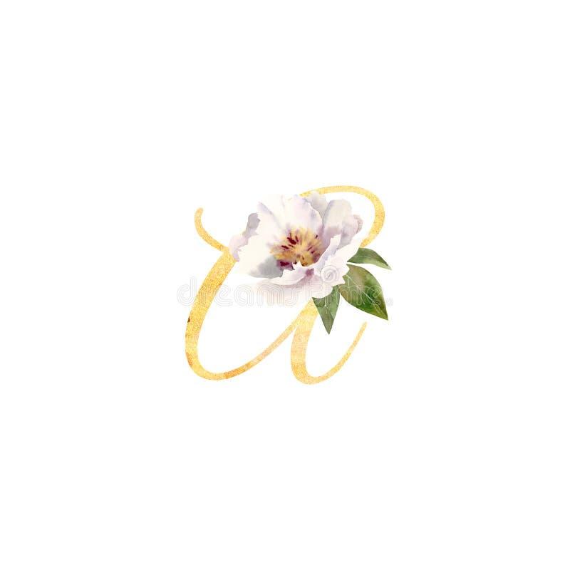 Letra de oro A adornada con la peonía pintada a mano de la flor de la acuarela ilustración del vector