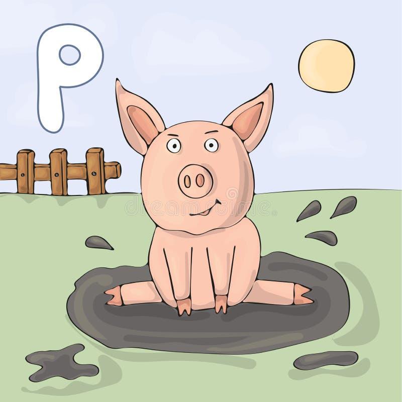 Letra ilustrada P do alfabeto e porco Desenhos animados do vetor da imagem do livro de ABC Um porco engraçado senta-se em uma poç ilustração stock