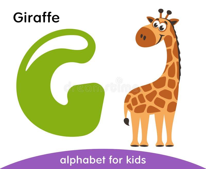 Letra verde G e girafa marrom ilustração do vetor