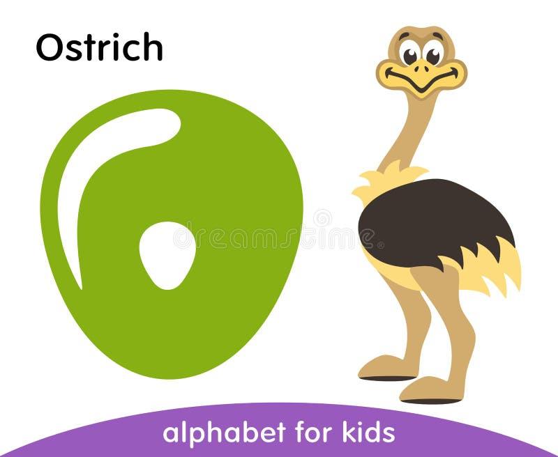 Letra verde O e avestruz bonito ilustração royalty free