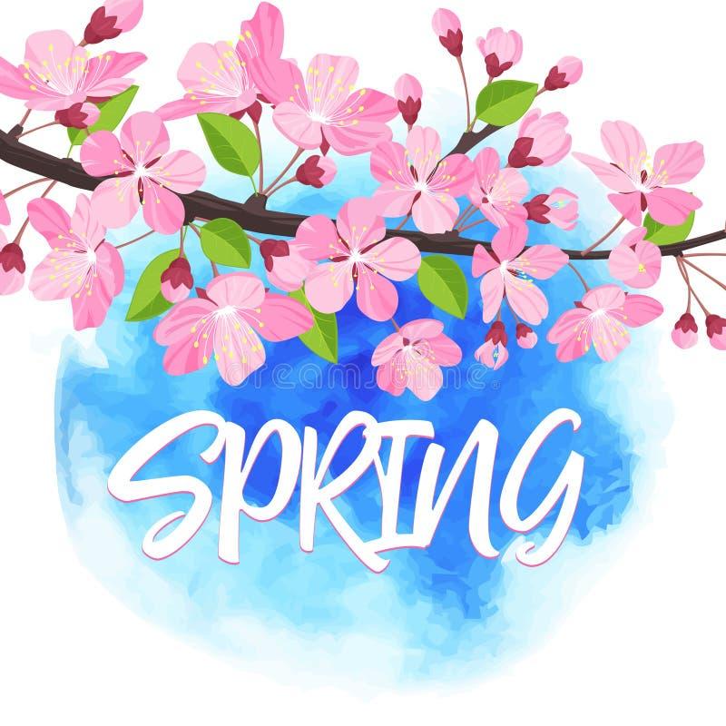 Letras de la primavera Brunch floreciente del árbol con las flores de la primavera Ilustración del vector stock de ilustración