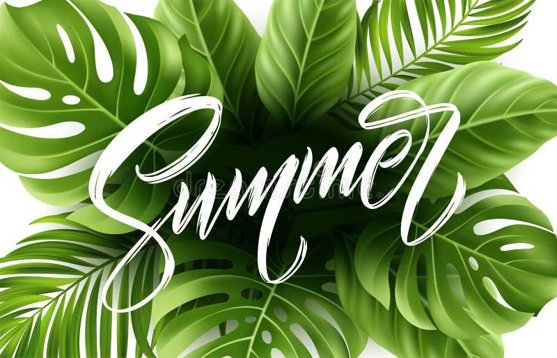 Letras del verano en el fondo de hoja de palma Ilustración del vector libre illustration