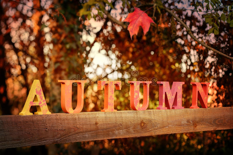 Letras do outono foto de stock