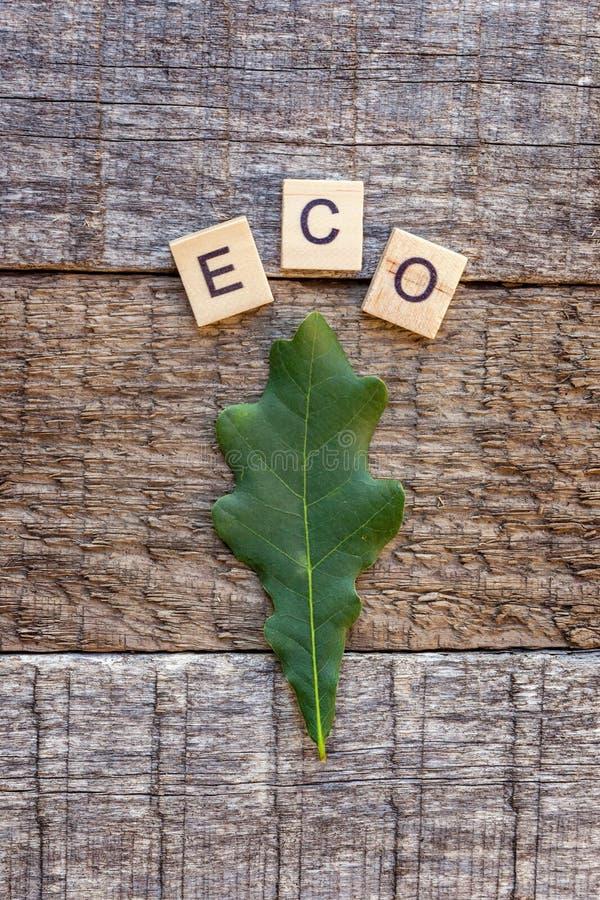 Letras palabra de la inscripción ECO y hoja del roble en viejo fondo de madera rústico foto de archivo