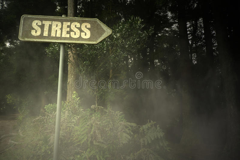 Letrero viejo con la tensión del texto cerca del bosque siniestro fotos de archivo