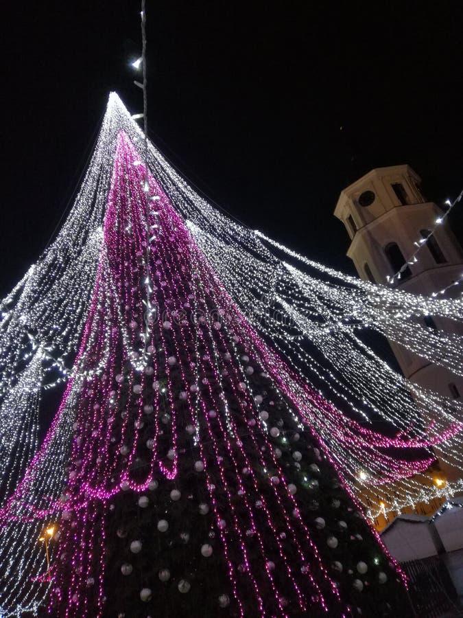 Lets célèbrent Noël ! images libres de droits