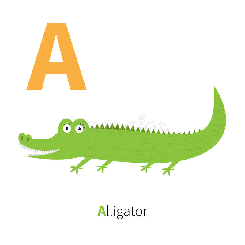 Letter A Alligator Zoo alphabet. English abc with animals Education cards for kids White background Flat design stock illustration