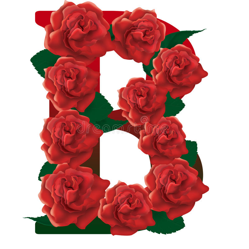 Letter B red roses illustration royalty free stock images