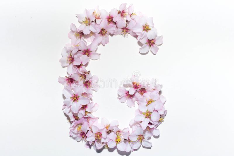 Letter of the English alphabet from flowers royalty free stock images