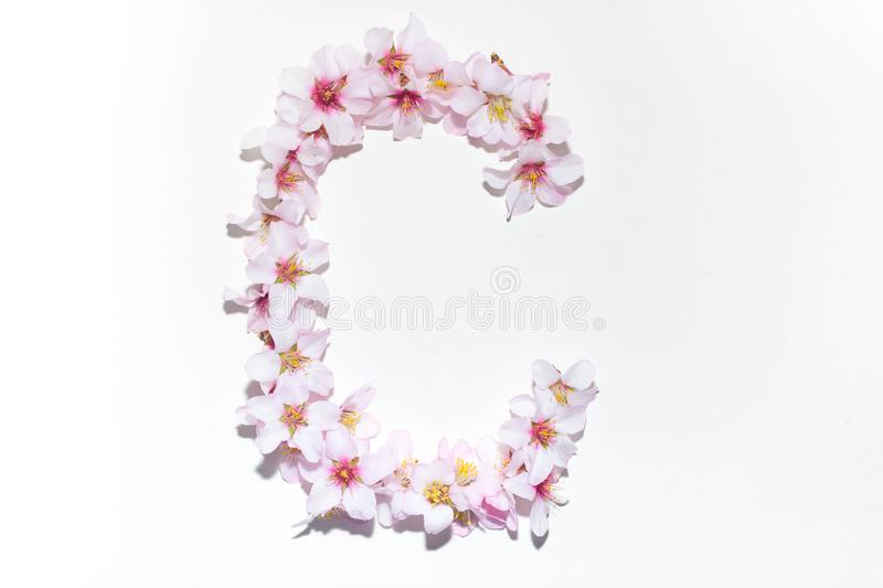 Letter of the English alphabet from flowers. Letter of the English alphabet made from flowers on a white background, isolated, design, text, symbol, font, color stock photo