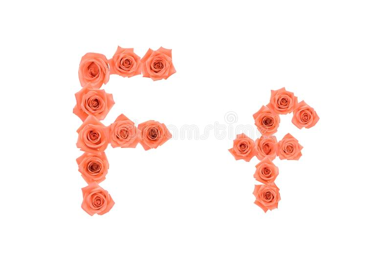 Letter F, Alphabet Made From Orange Roses Stock Image - Image of anniversary, plant: 100834265