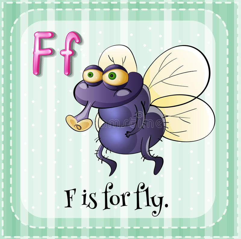Letter F. Flashcard letter F is for fly royalty free illustration