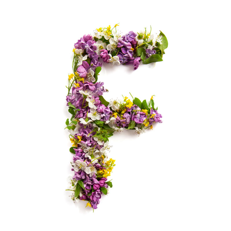 The letter «F» made of various natural small flowers. royalty free stock image