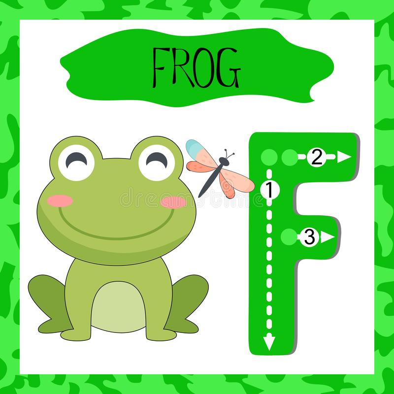 Letter F uppercase cute children colorful zoo and animals. ABC alphabet tracing flashcard of Green Frog for kids learning English vocabulary and handwriting vector illustration