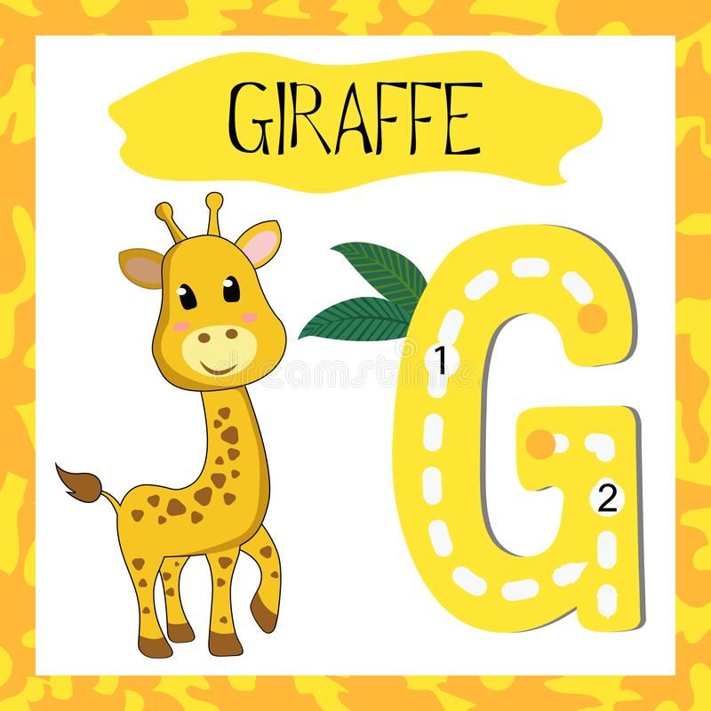 Letter G uppercase cute children colorful zoo and animals. ABC alphabet tracing flashcard of Giraffe for kids learning English vocabulary and handwriting vector illustration