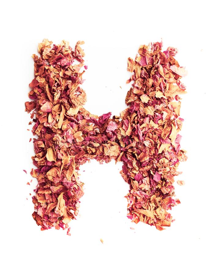 Letter H made of rose petals, isolated on white background. Food typography, english alphabet. Design element. Letter H, made of rose petals, isolated on white royalty free stock images