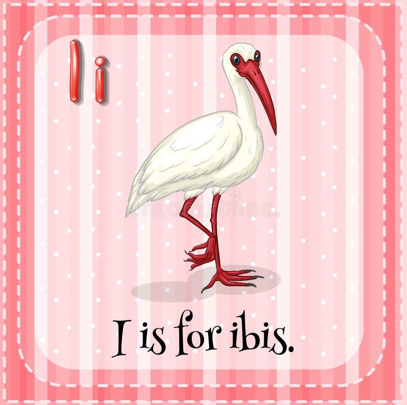 Letter I. Flashcard letter I is for ibis vector illustration