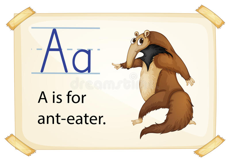 Letter A. Illustration of a flashcard with letter A vector illustration