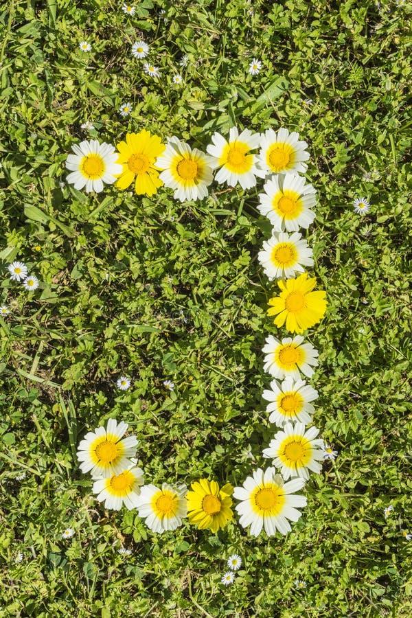 Letter J flower alphabet. Letter J from complete flower alphabet royalty free stock image