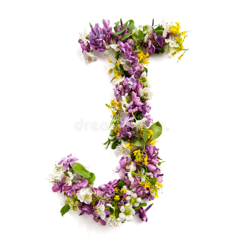 Download The Letter «J» Made Of Various Natural Small Flowers. Stock Image - Image of mixed, pattern: 94021647