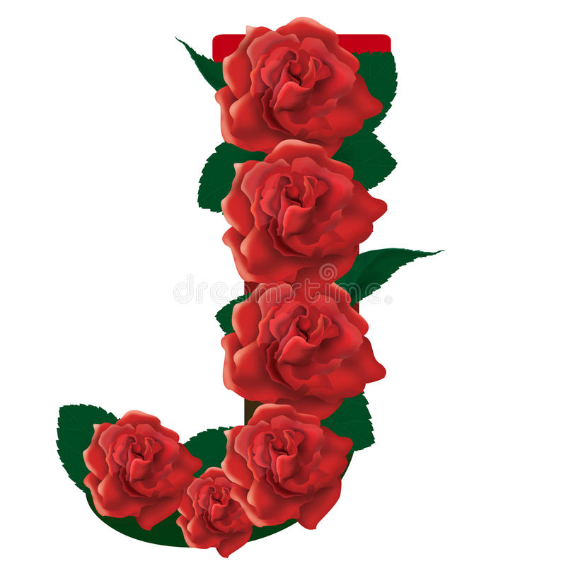 Letter J red roses illustration royalty free stock images