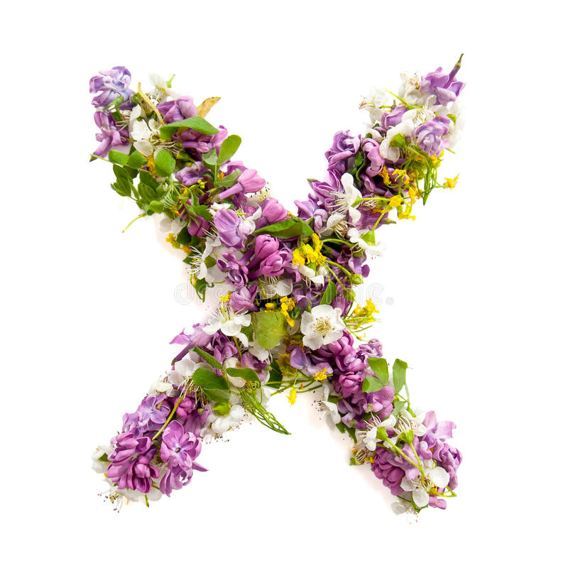 The letter «X» made of various natural small flowers. royalty free stock photos