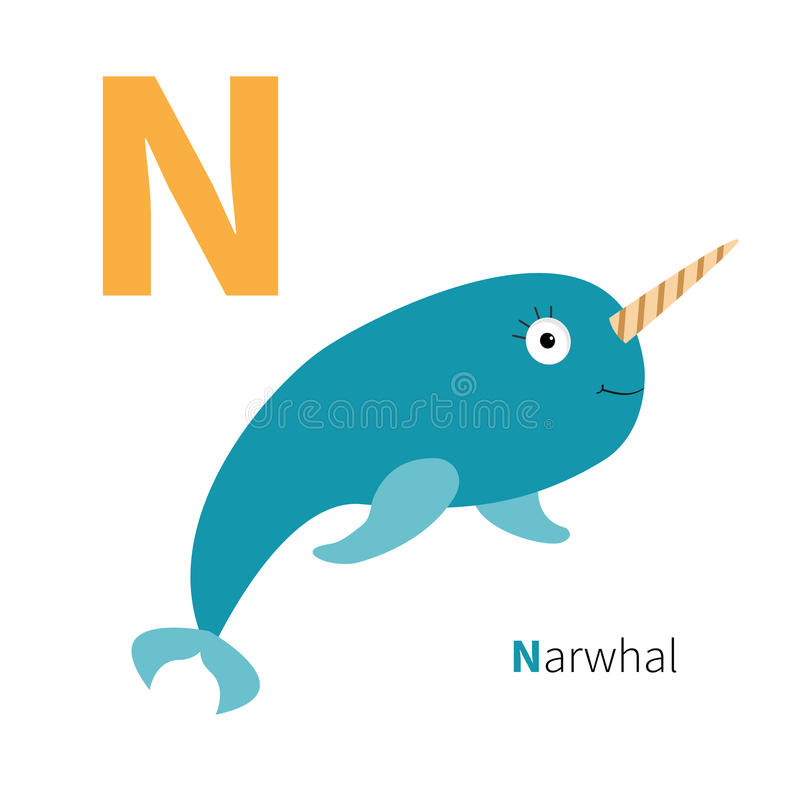Letter N Narwhal Zoo alphabet. English abc with animals Education cards for kids White background Flat design. Vector illustration royalty free illustration