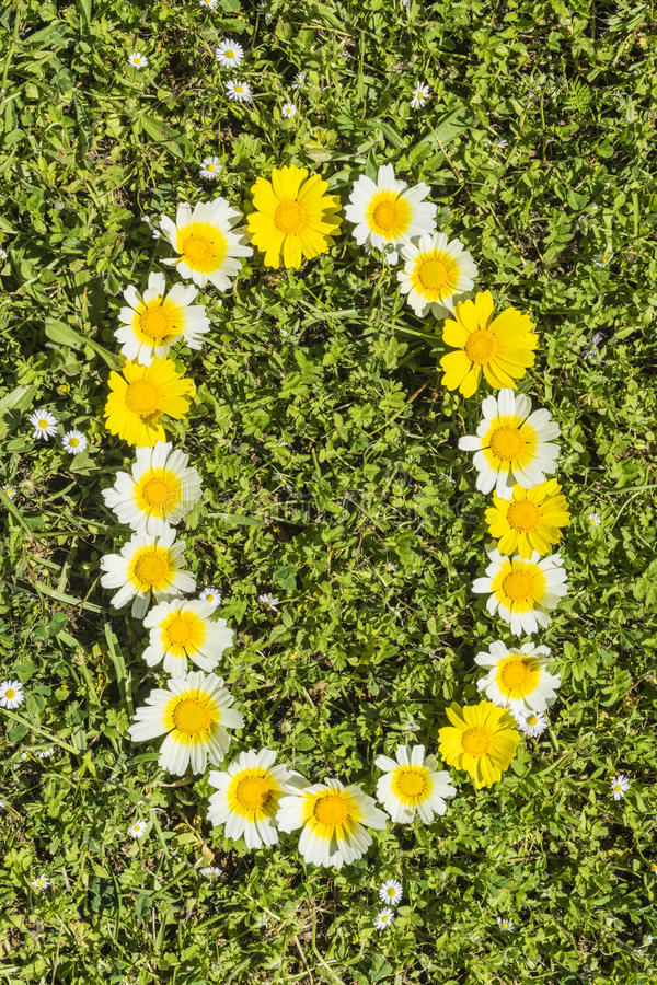 Letter O flower alphabet. Letter O from complete flower alphabet royalty free stock photos