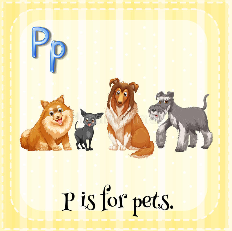 Letter P. Flashcard alphabet P is for pets stock illustration