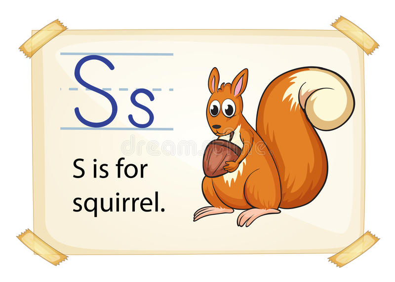 A letter S for squirrel stock illustration
