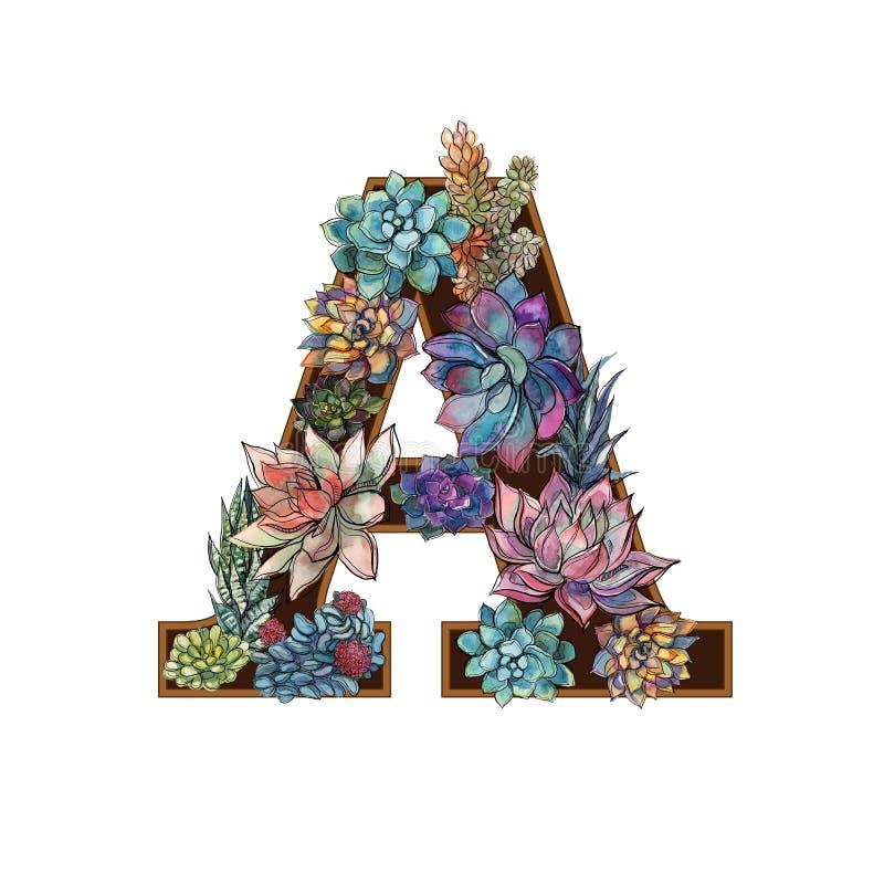 Letter A. Succulents. Alphabet Watercolor Graphics Vector stock illustration