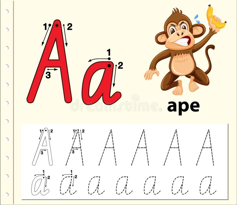 Letter A Tracing Alphabet Worksheets Stock Vector - Illustration Of Letter,  Activity: 137637687