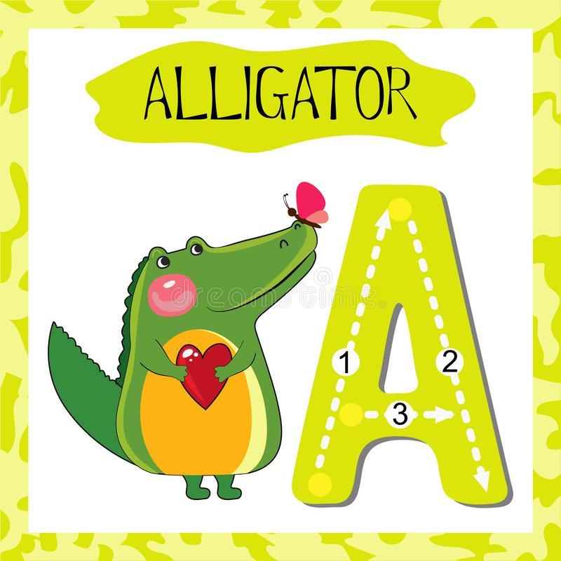 Letter A uppercase cute children colorful zoo and animals. ABC alphabet tracing flashcard of Alligator for kids learning English vocabulary and handwriting royalty free illustration
