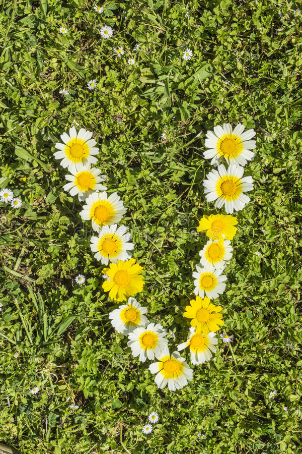 Letter v flower alphabet stock photo image of blossom 52516674 download letter v flower alphabet stock photo image of blossom 52516674 altavistaventures Choice Image