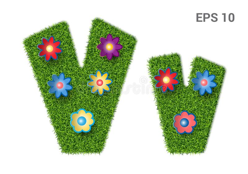 Letter Vv with a texture of grass and flowers. Vv - capital and capital letters of the alphabet with a texture of grass. Moorish lawn with flowers. Isolated on stock illustration
