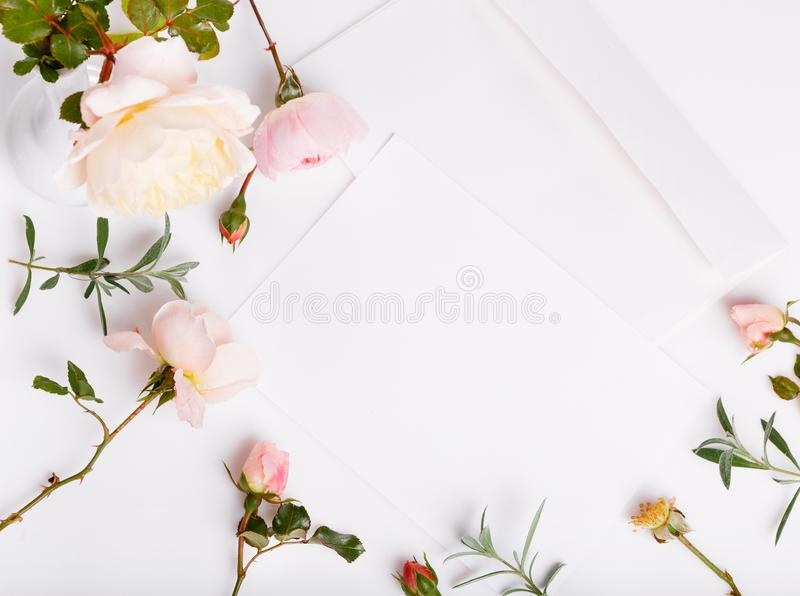 Letter, pen and white envelope on white background with pink english rose. Invitation cards or love letter. Birthday royalty free stock images