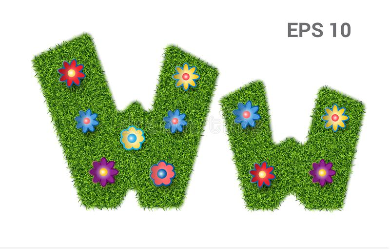 Letter Ww with a texture of grass and flowers. Ww - capital and capital letters of the alphabet with a texture of grass. Moorish lawn with flowers. Isolated on royalty free illustration