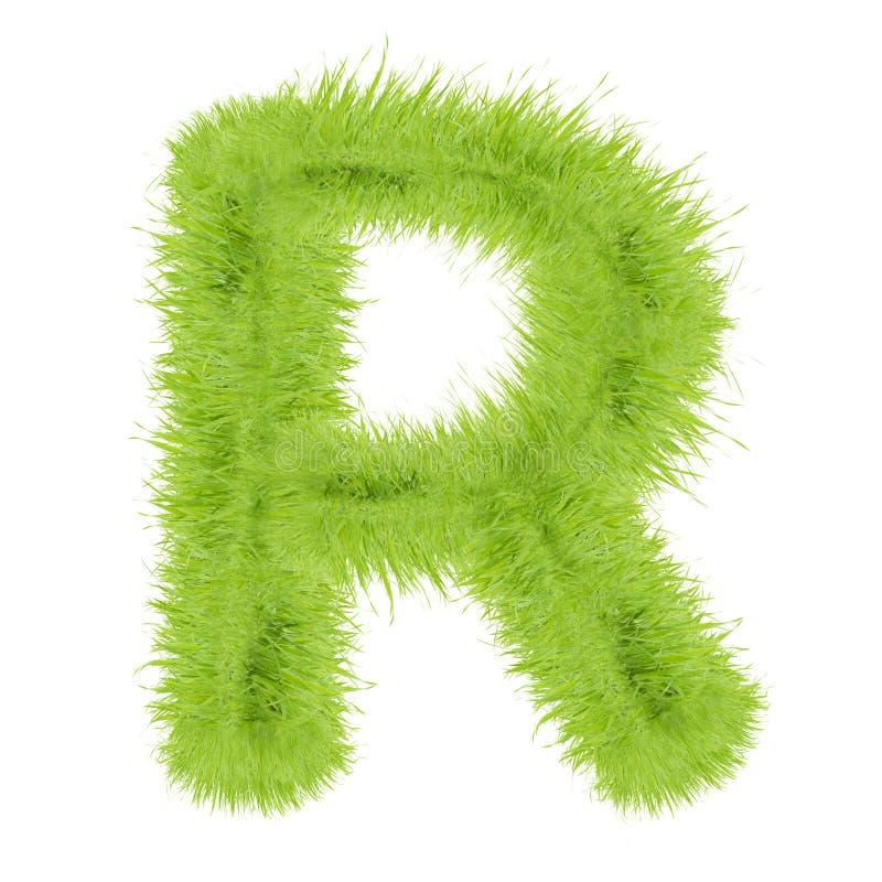 Lettera dell'erba su fondo bianco fotografia stock libera da diritti