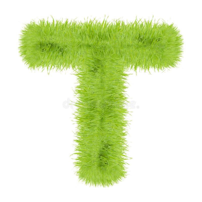 Lettera dell'erba su fondo bianco immagini stock