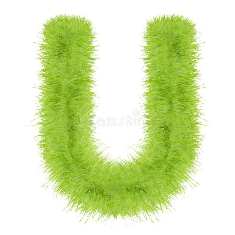 Lettera dell'erba su fondo bianco immagine stock