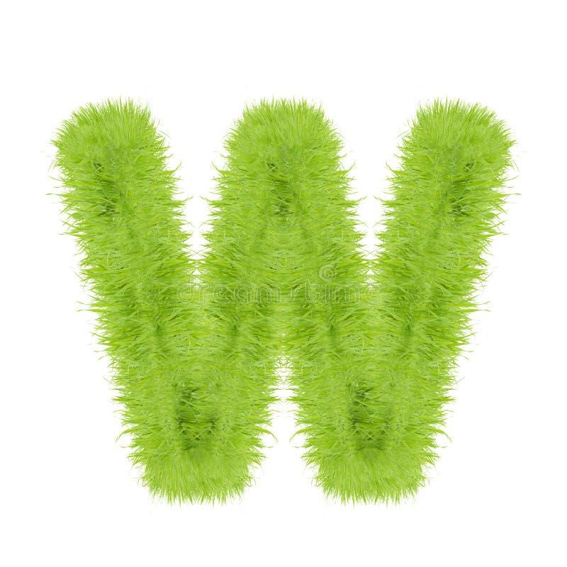 Lettera dell'erba su fondo bianco fotografia stock