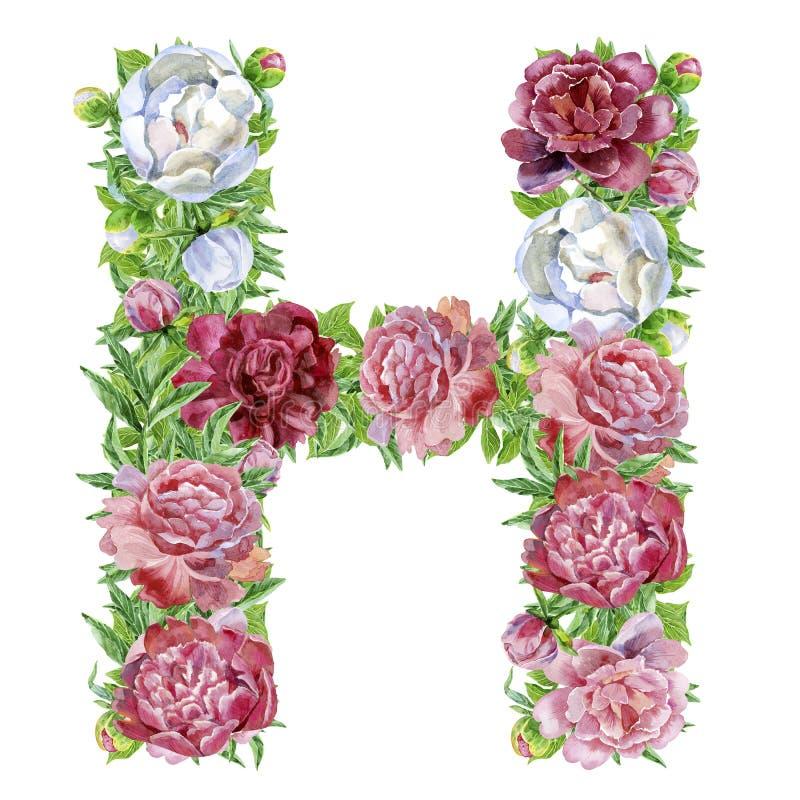 Lettera H dei fiori dell'acquerello illustrazione di stock