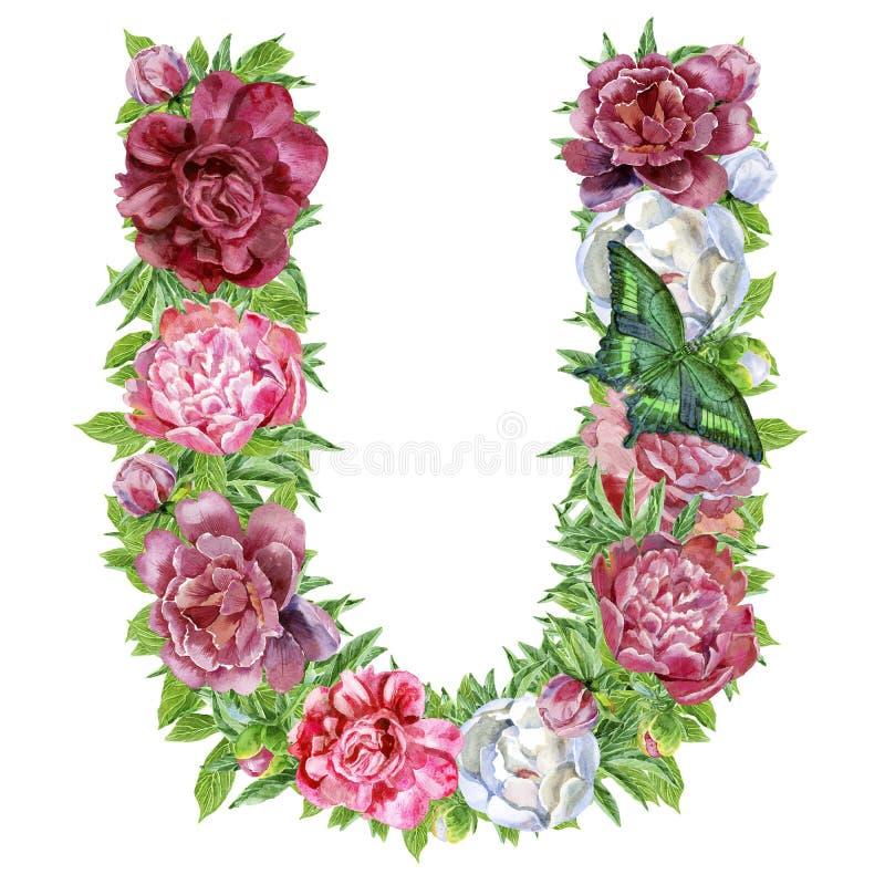 Lettera U dei fiori dell'acquerello illustrazione di stock
