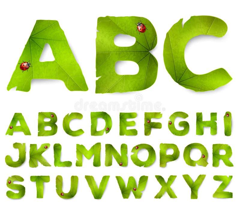Lettere di alfabeto di vettore fatte dalle foglie verdi