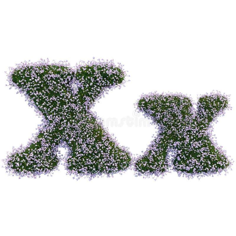 Lettere fatte delle foglie e dei fiori immagini stock libere da diritti
