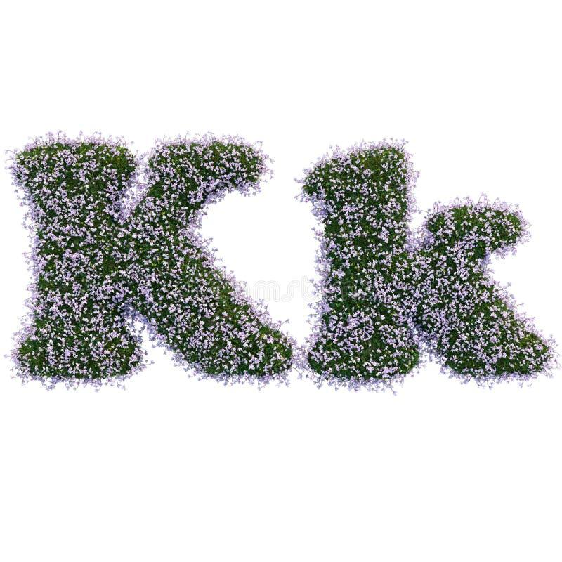 Lettere fatte delle foglie e dei fiori fotografia stock libera da diritti