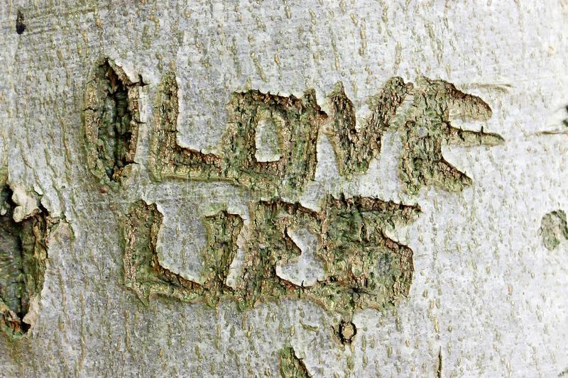 Letters carved on tree trunk royalty free stock photo