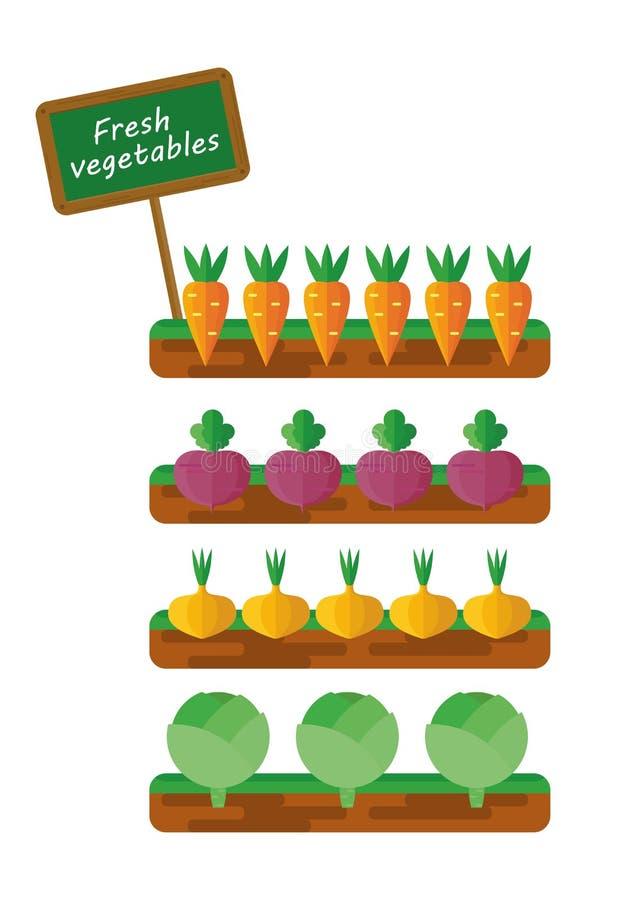 Letti con le verdure royalty illustrazione gratis