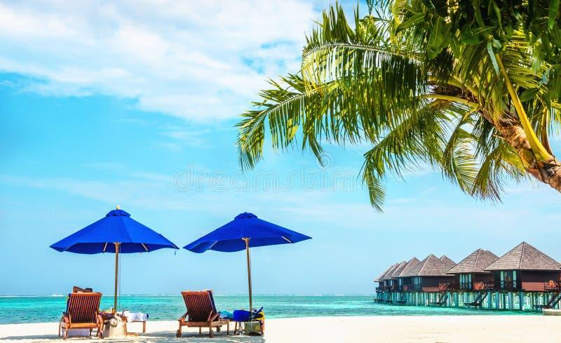 Lettini con gli ombrelli su una spiaggia esotica nei precedenti di un bungalow di legno, Maldive immagine stock libera da diritti